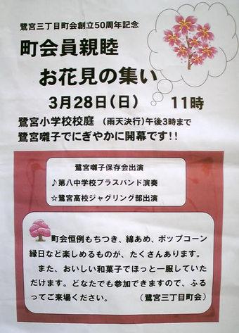 20100320hanami