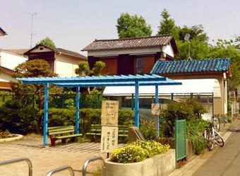 20110514mitake_sakura02