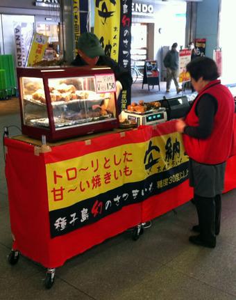 20110403fujimidai_annoimo