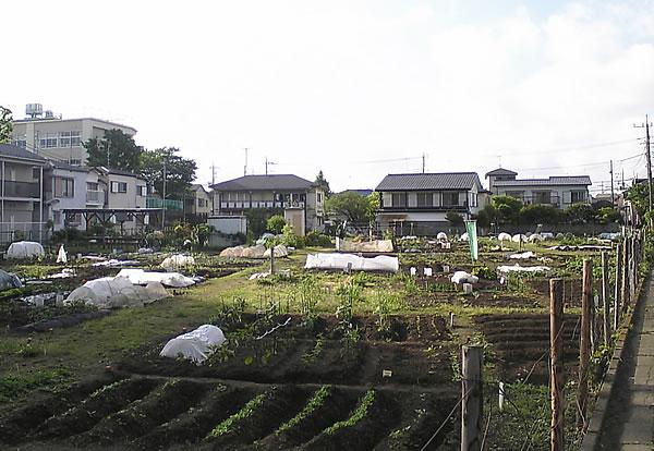 20090131武蔵台03
