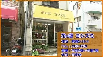 20120701yosizumi01
