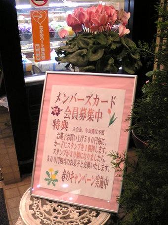 20080527fujinoki02