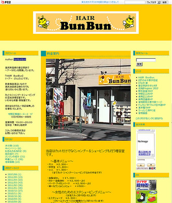 20110512hairbunbun_blog
