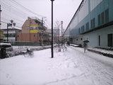 20080203snow_fujimidai01