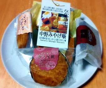 20110109fujinoki02