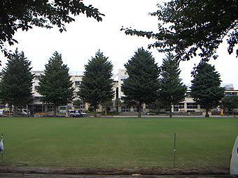 20070728musasidai_sinafu
