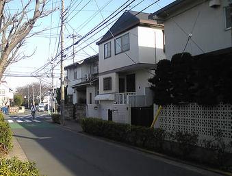 20090207kamisagi