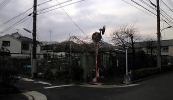20100221 上鷺宮 かみさぎ農園 上鷺宮5-30 高齢福祉02