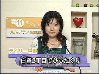 20101111sirasagi01