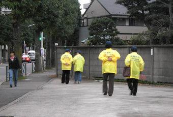 20081108kitasagi_pato