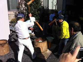 20111204sirasagi_moti