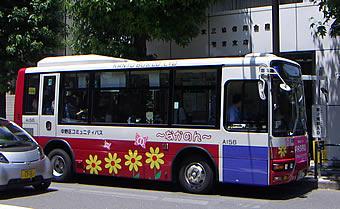 20080315chatnoir02