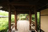 東福寺庭園3