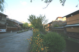 茶屋街と白川