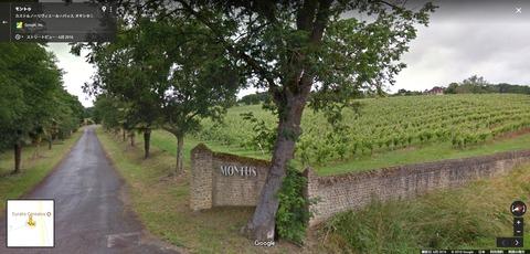 Montus02