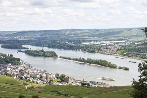 Rheingau01