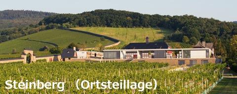 Steinberg01
