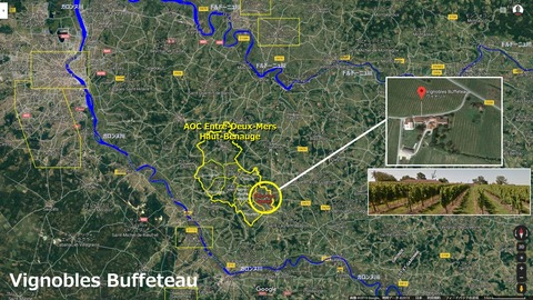 Vignobles_Buffeteau_Haut_Benauge