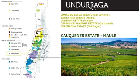 Undrurraga02