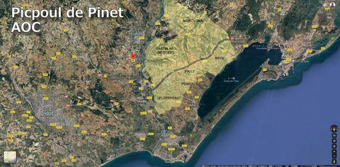 Picpoul02