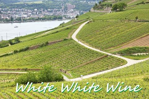 WhiteWhiteWine01
