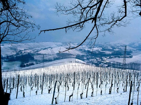 prunotto_winter
