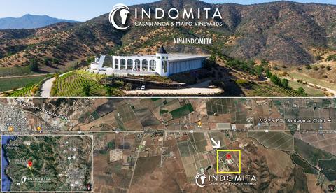 Indomita01