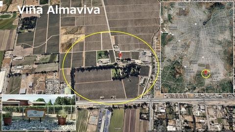 Almaviva01