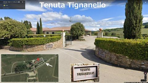 TenutaTignanello01