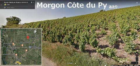 Morgon02