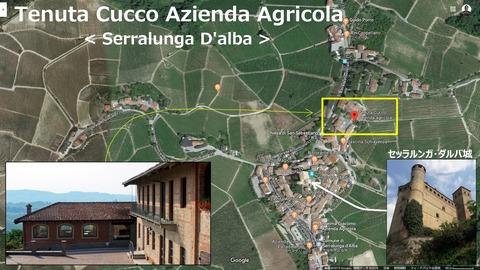 Cucco02