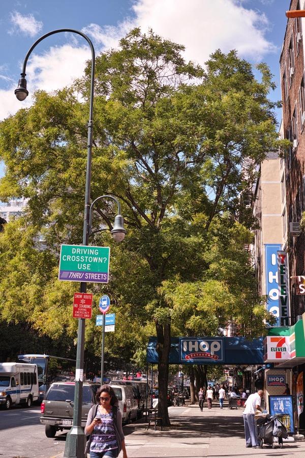 NYC Street Photography 13