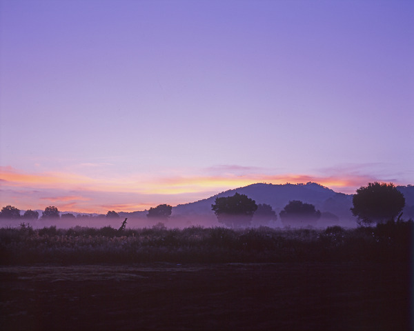 夜明けの大地 (La Tierra al Amanecer)