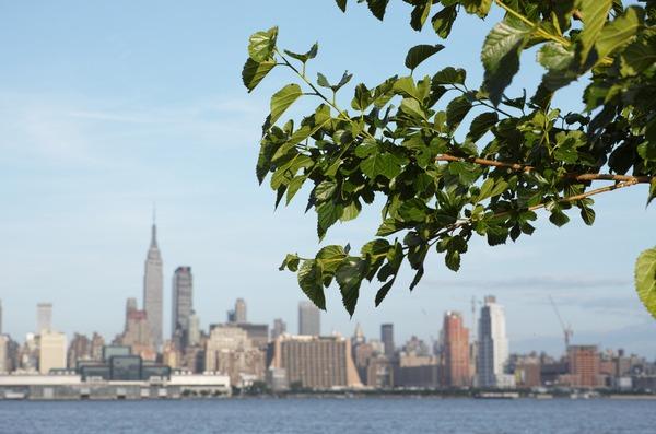 お題:背景がマンハッタンな写真