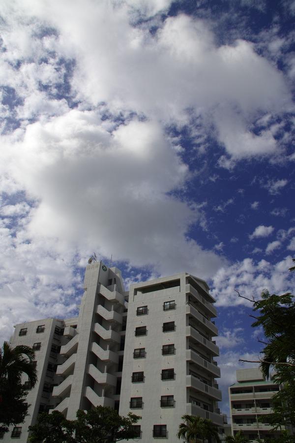 夏は近づき、沖縄は遠ざかる