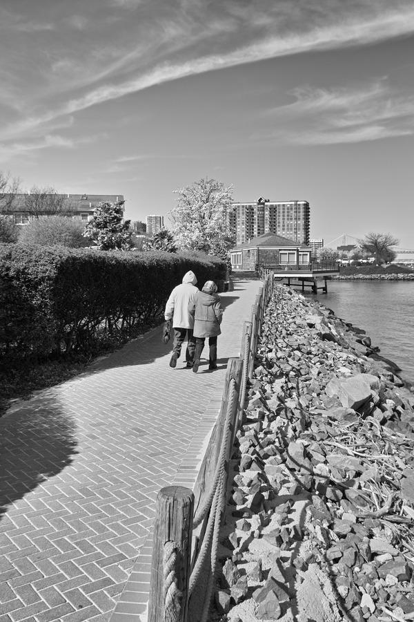 河畔の遊歩道