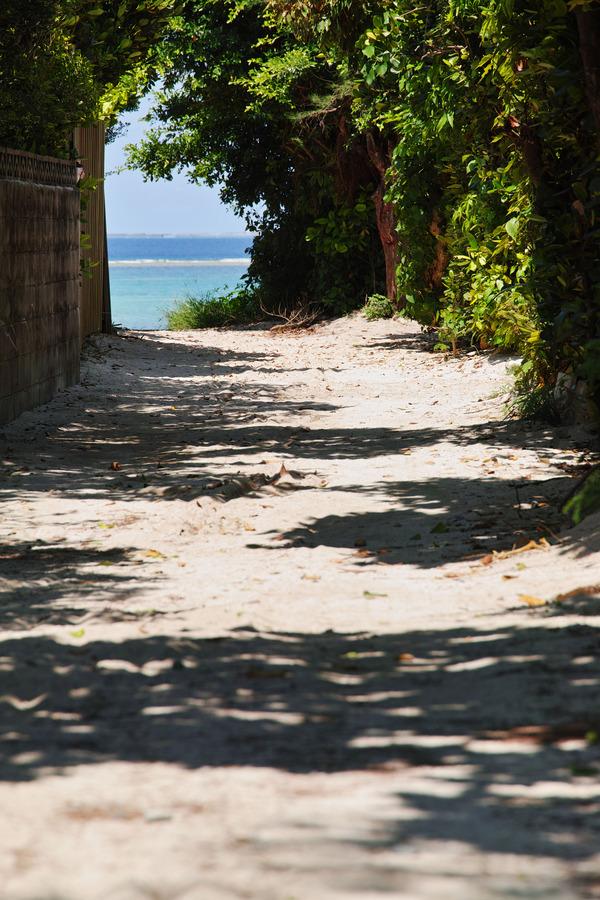 道の向こうが海