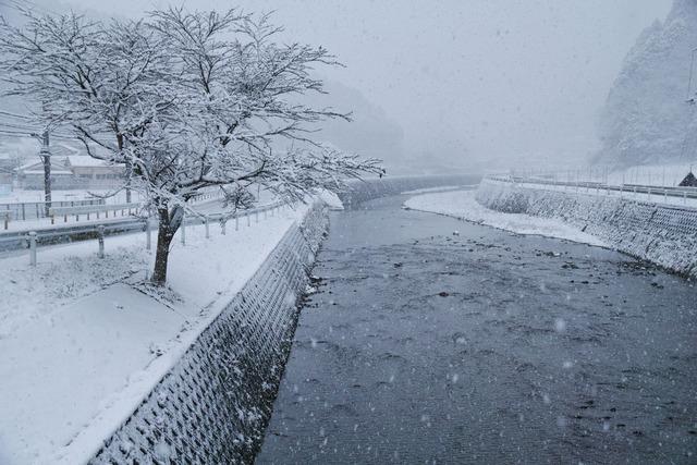雪景色を求めて