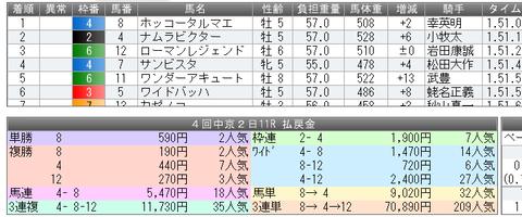 2014cc - コピー