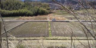 200405 山梨田んぼ