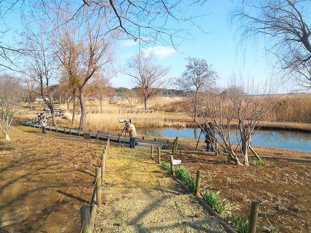 北柏ふるさと公園 (2)