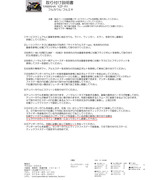 YZF-R1F・Cフルエキ文章