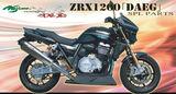 ZRX1200[DAEG]