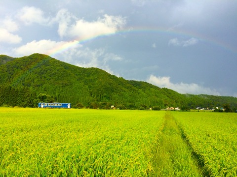 今日の内陸線 【44】虹と社員さん