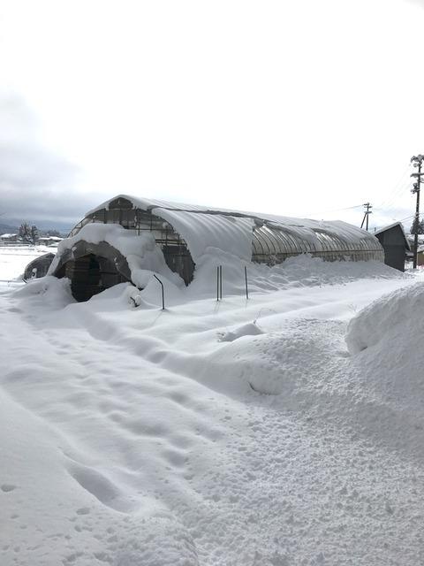 冬作業!除雪とか