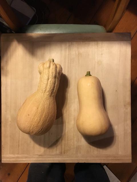 バターナッツかぼちゃの和物と洋物