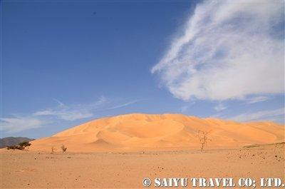 アラカウの砂丘地帯