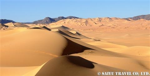 テネレ砂漠arakao (6)