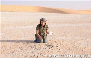 ジュラブ砂漠で魚の化石と