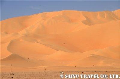 アラカウの砂丘地帯2